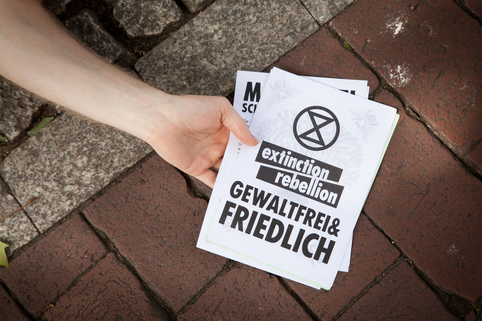 EINMALIGE VERWENDUNG Extinction Rebellion/ Die In Harburg