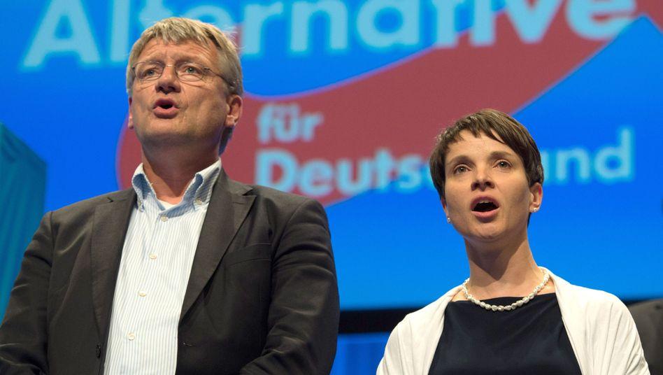 AfD-Vorstandssprecher Jörg Meuthen und Frauke Petry