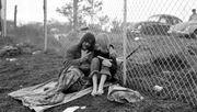 Woodstocks schüchternes Auge