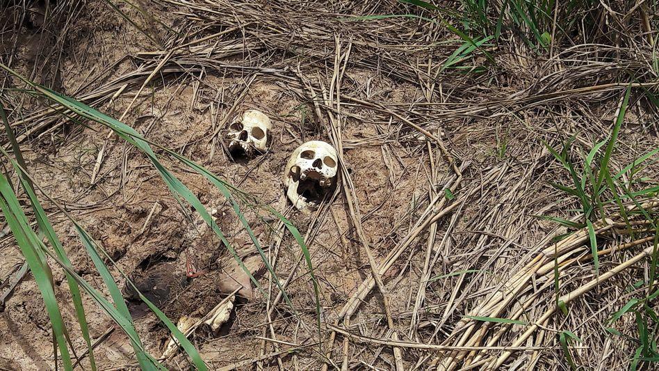 Menschenschädel in der Region Kasai (März 2017)