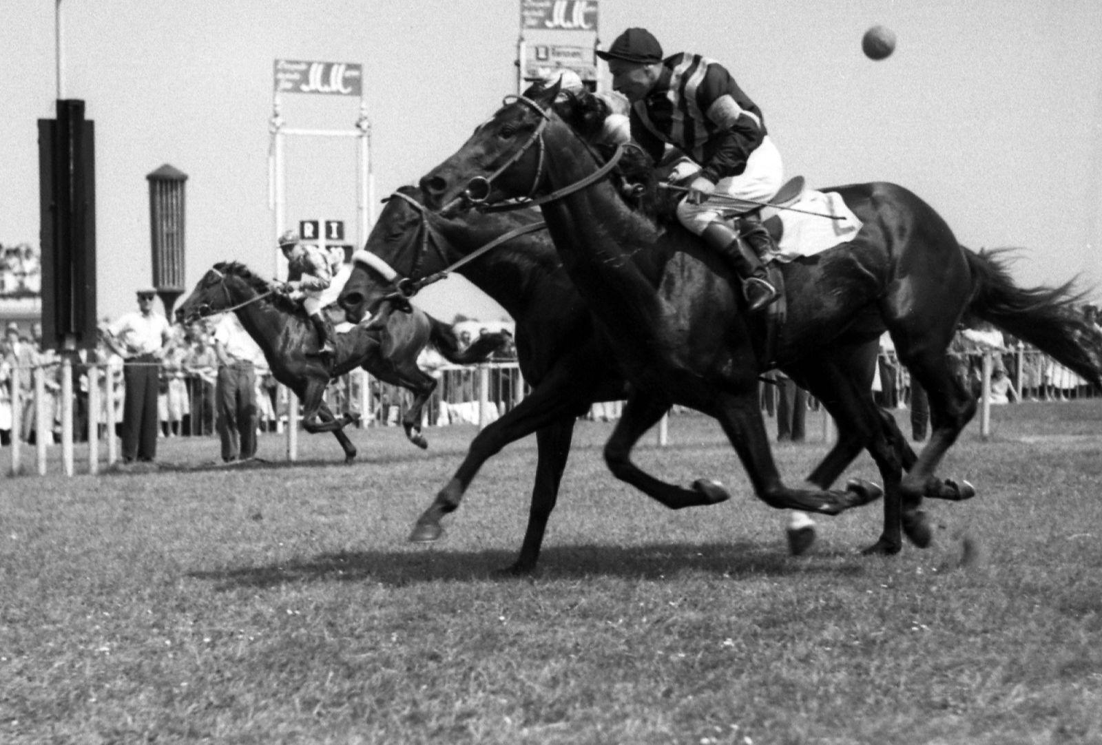 30.06.1957, Hamburg, Hansestadt Hamburg, GER - Brummer mit Hein Bollow (aussen) gewinnt das Investment-Rennen. Galoppre