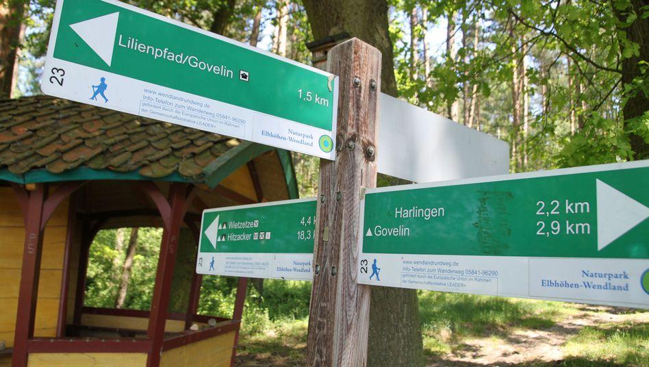 Wegweiser im Staatsforst Göhrde (Niedersachsen)