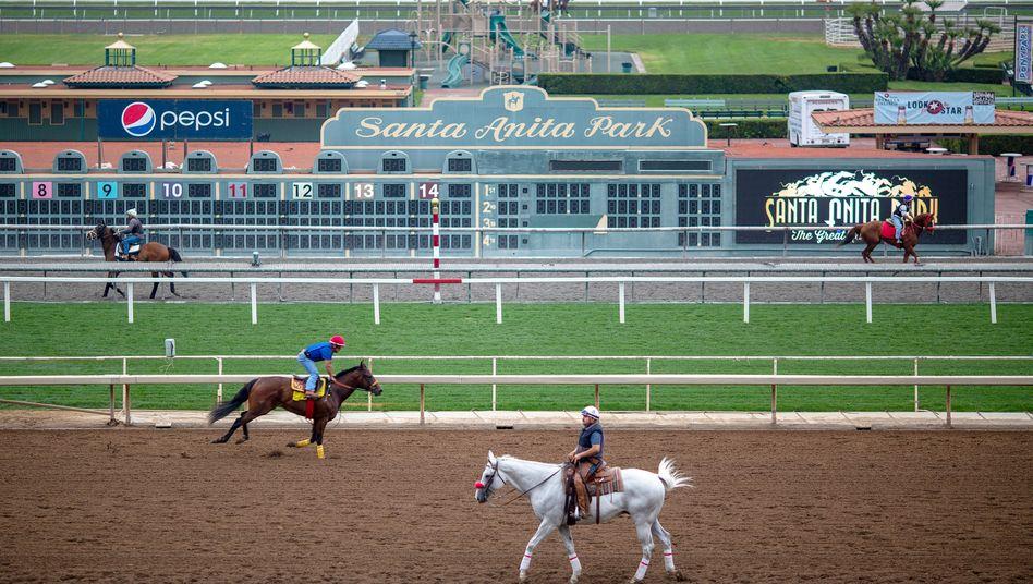 Rennpferde während des Trainings in Santa Anita Park (Archivbild: 15. Juni 2019)