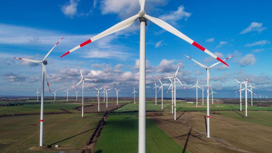 Windkraftpark in Brandenburg