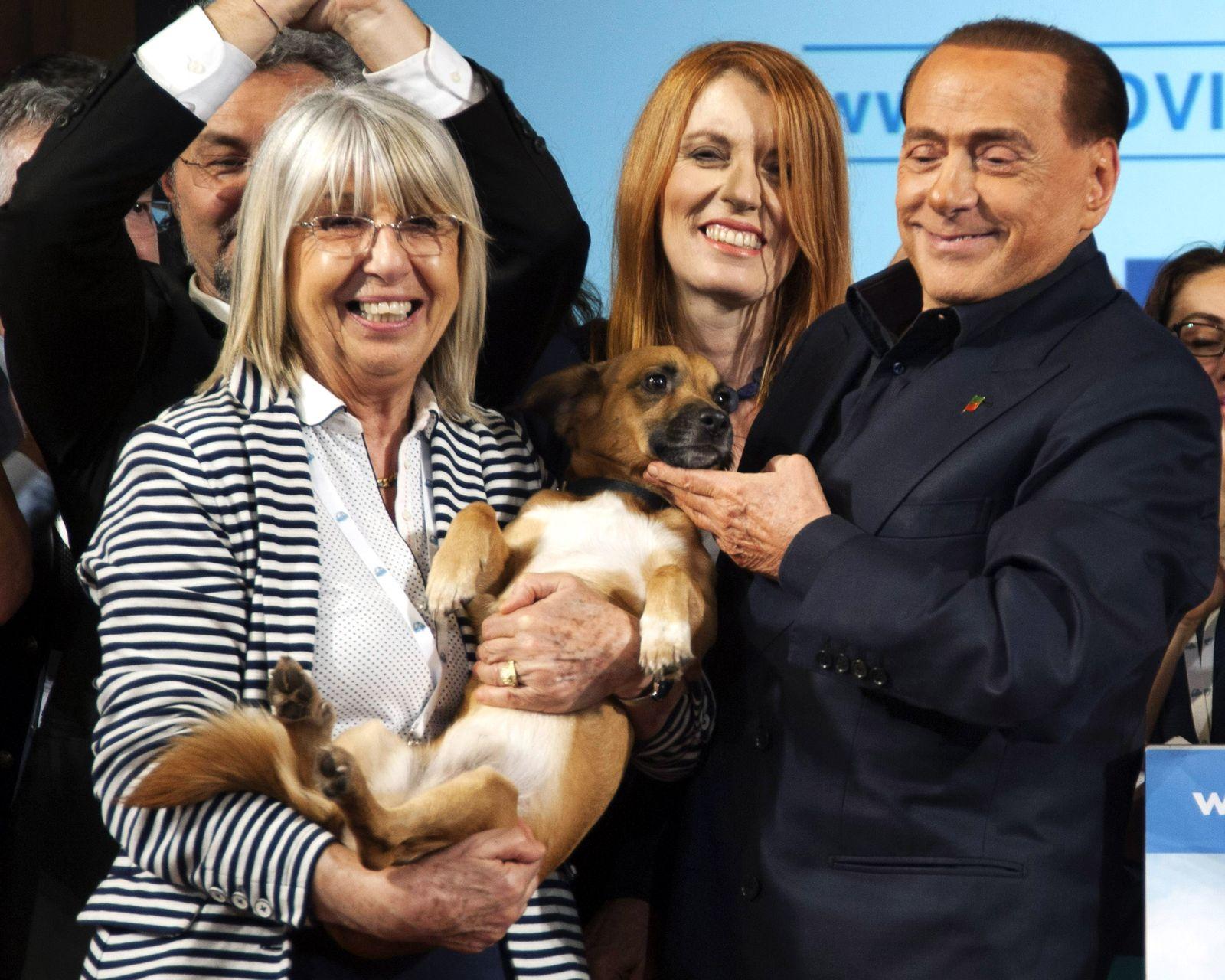 EINMALIGE VERWENDUNG Silvio Berlusconi