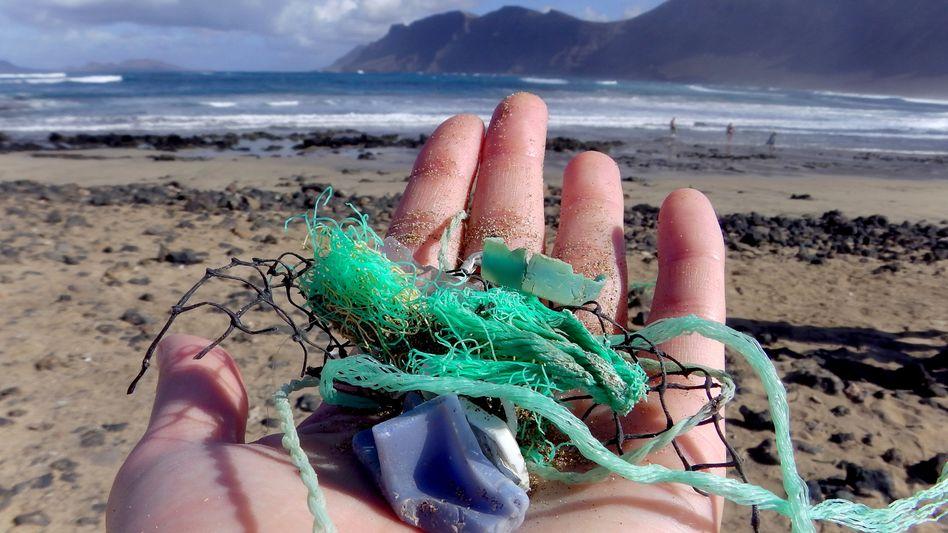 Strandfund auf den Kanaren: 15 Tüten voll Plastik pro Meter Küste