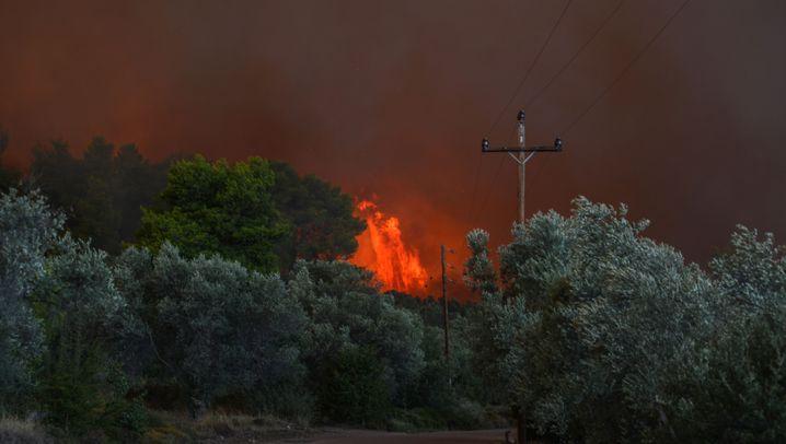 Griechenland: Feuer wütet auf Insel Euböa nahe Athen
