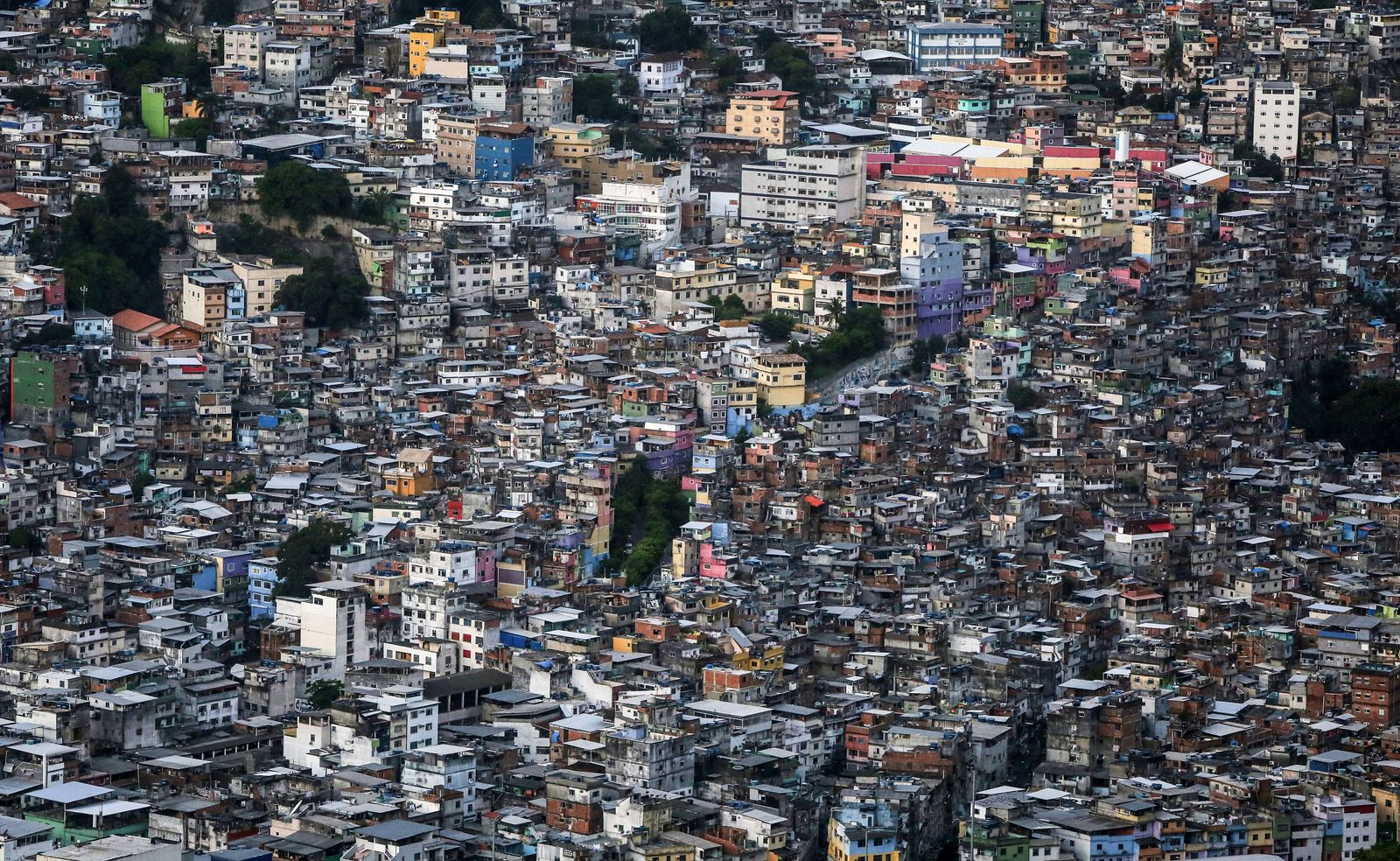 Buch/ Misha Glenny: Der König der Favelas