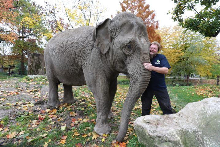 Christian Gerken mit Elefantendame Jenny im Karlsruher Zoo: Ein Zirkus hatte sie ausgemustert
