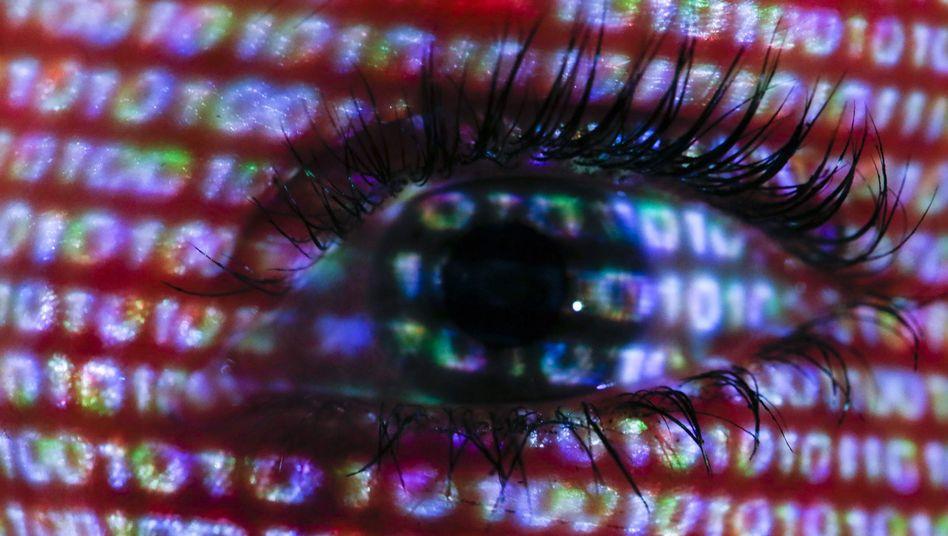 Allsehendes Netz-Auge: Überwachung von totalitärem Ausmaß