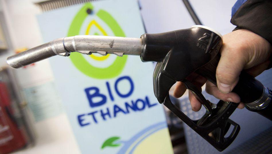 Biotreibstoffe: Das EU-Parlament will den Gesamtanteil deckeln