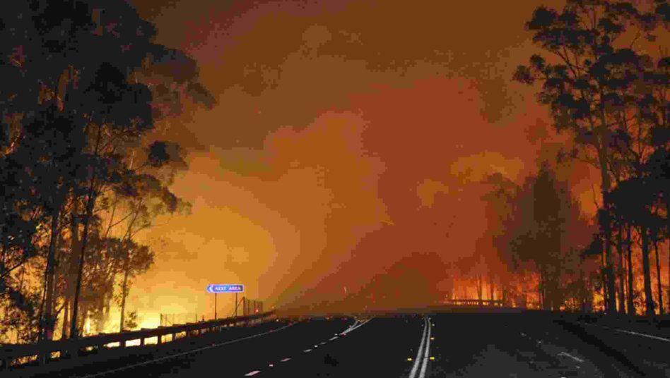 Katastrophe in Australien: Feuerwehrmann stirbt im Kampf gegen die Brände