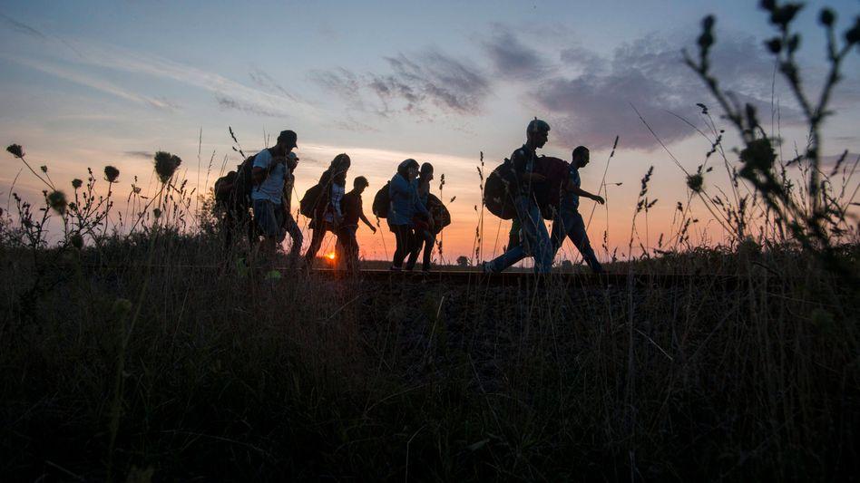Flüchtlinge zwischen Ungarn und Serbien: Slowakei klagt gegen Quote