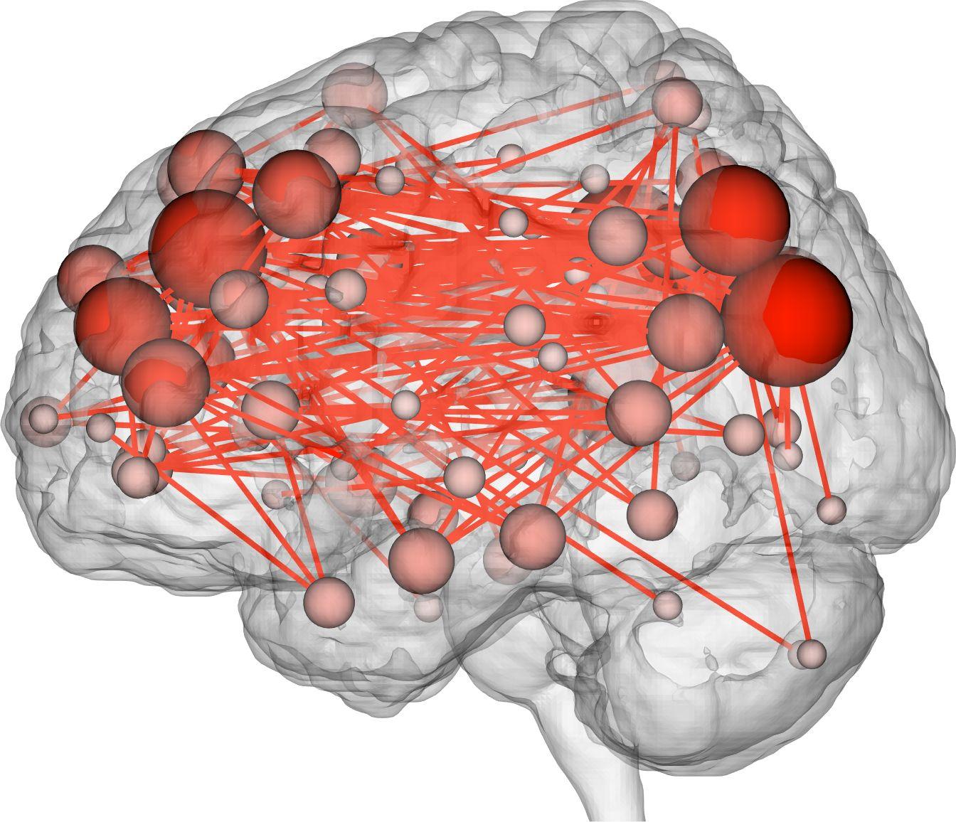 EINMALIGE VERWENDUNG Fingerabdruck des Gehirns/