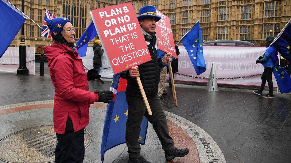 Demonstranten vor dem Parlament in Westminster
