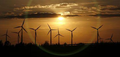 Windräder in Dessau: Neue Arbeitsplätze - aber kein Klimaschutz