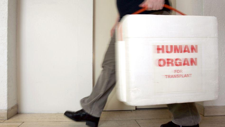 Transport von Spenderorganen: DSO-Vorstandsmitglied tritt zurück