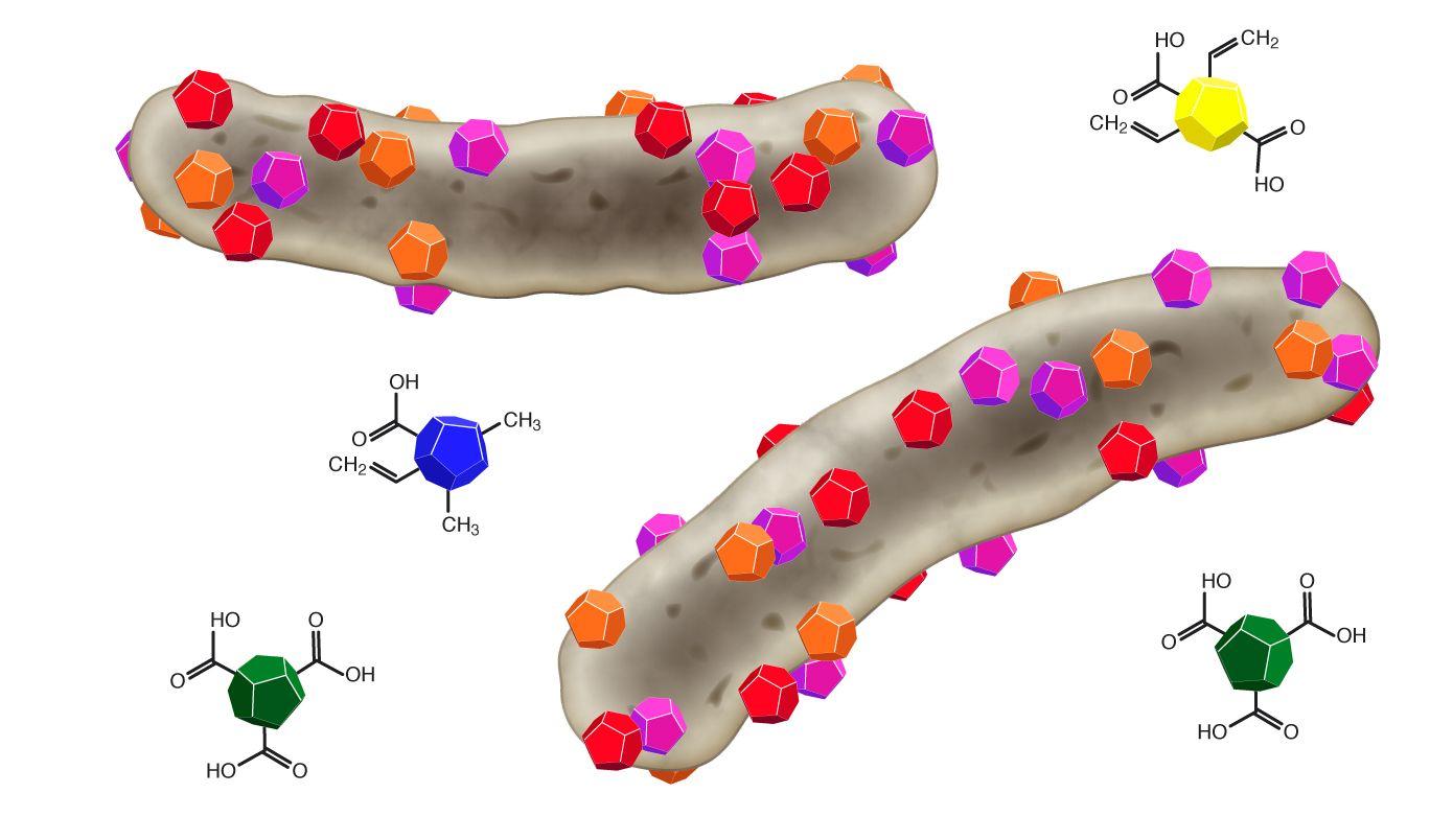 EINMALIGE VERWENDUNG GRAFIK Nanodiamanten