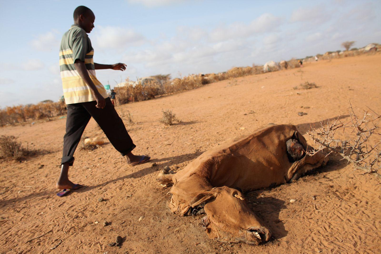 Kenia / Hungersnot