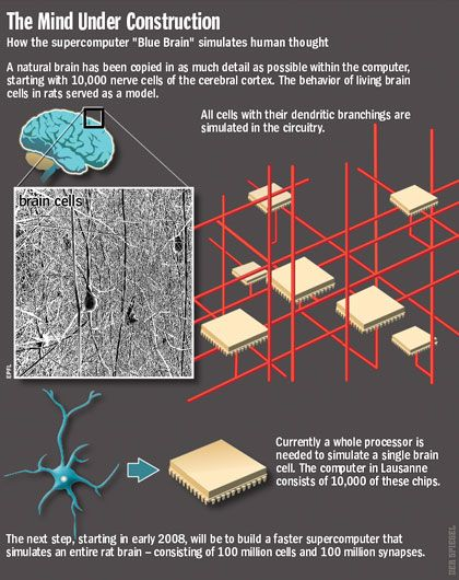 Graphic: the mind under construction