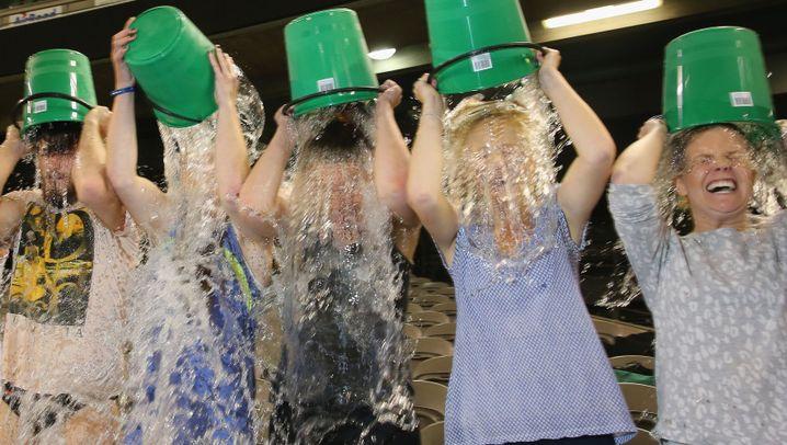 Ice Bucket Challenge: Nass werden für den guten Zweck