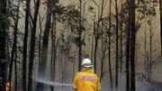 Was gegen die Brandstifter-These spricht
