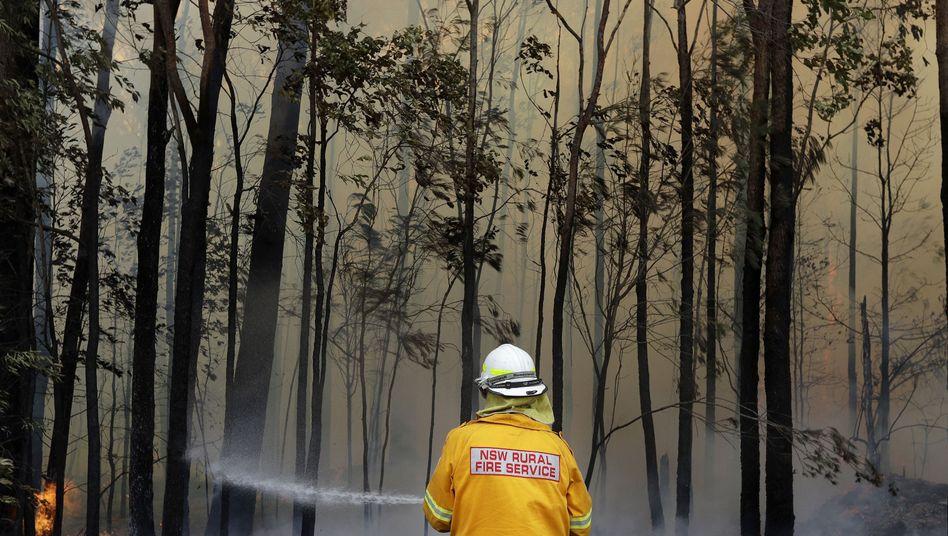 Tomerong in Australien: Rund 2300 Feuerwehrleute kämpfen im Bundesstaat New South Wales gegen etwa 110 Buschbrände
