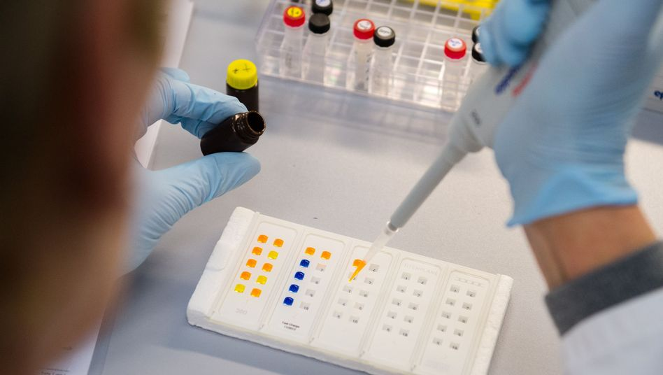 Eine Labormitarbeiterin bei einem Zika-Test