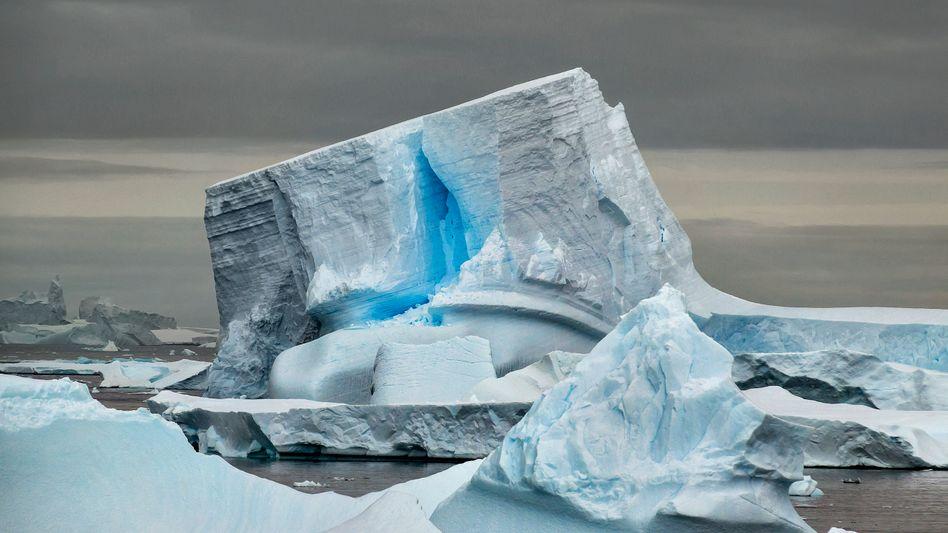 Treibender Eisberg in der Antarktis
