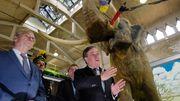 Union behauptet Vorsprung vor Grünen