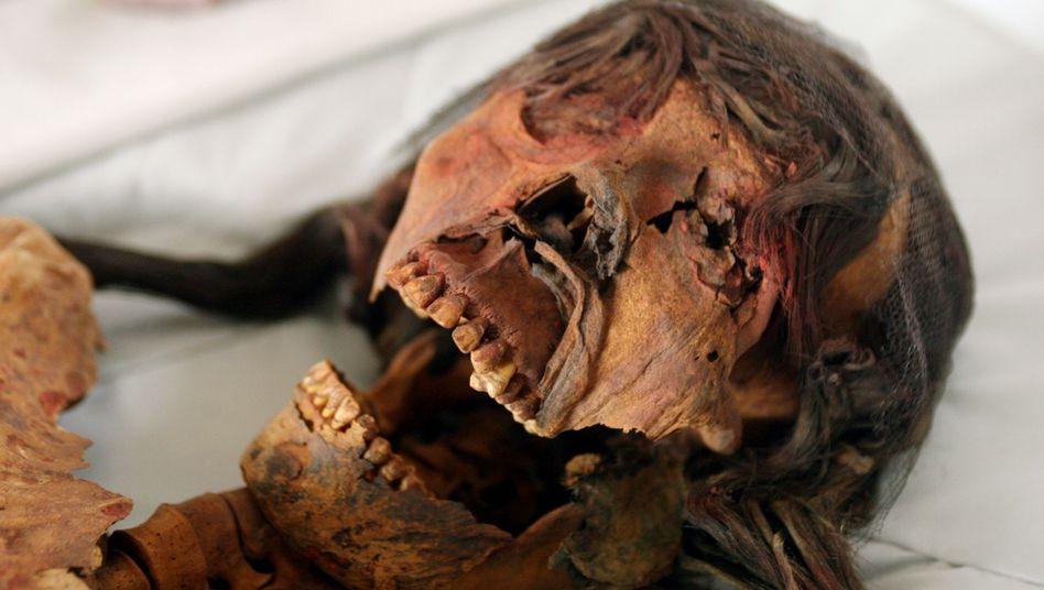 Totenkult: Der Stamm der Moche in Peru ließ seine Verstorbenen von Insekten verspeisen