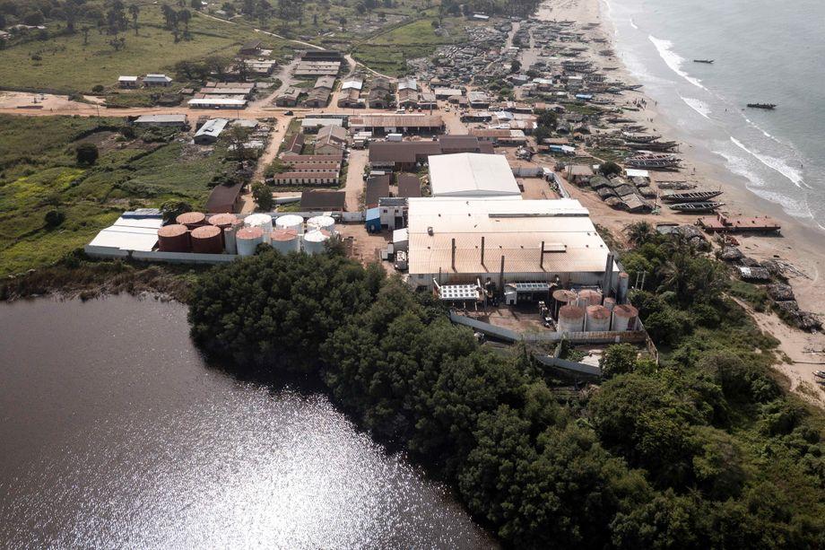 Die chinesische Golden-Lead-Fischmehlfabrik an der gambischen Küste: 800.000 Kilo Fischmehl pro Tag