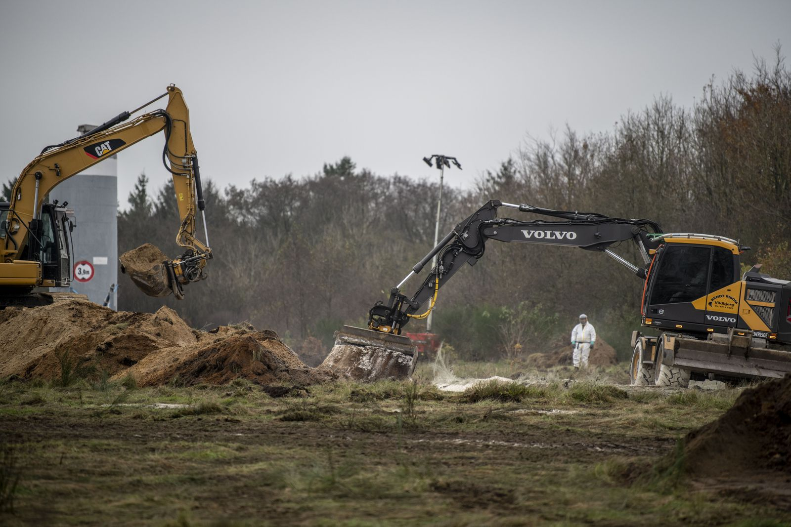Culled mink are buried in mass graves in Denmark, Holstebro - 09 Nov 2020