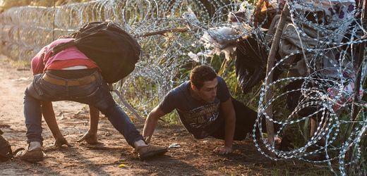Ungarn schiebt trotz EuGH-Urteil immer noch Asylsuchende ab