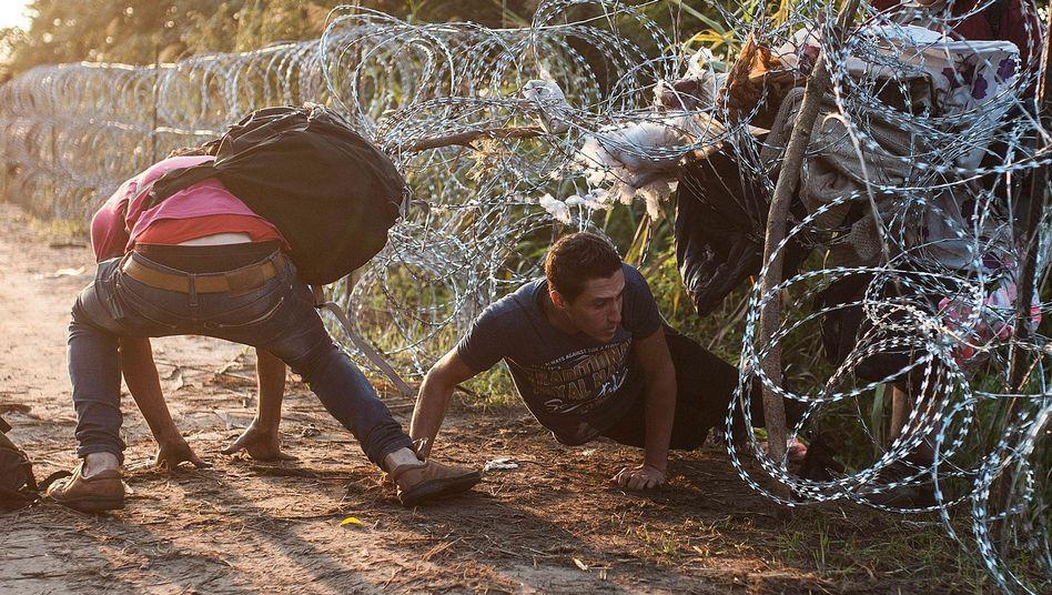 Grenze zwischen Ungarn und Serbien (Archiv): Der ungarische Premier Orbán will einen zweiten Zaun gegen Einwanderer bauen