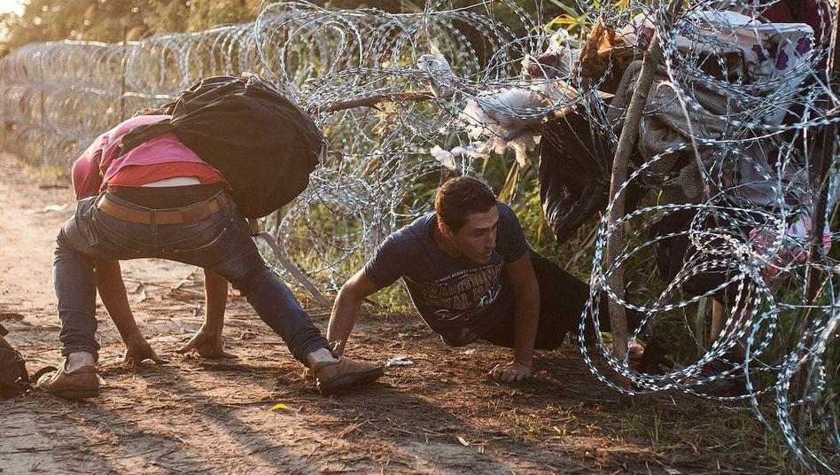 Asylsuchende kriechen unter dem Grenzzaun zwischen Ungarn und Serbien hindurch (Archivfoto von 2015)