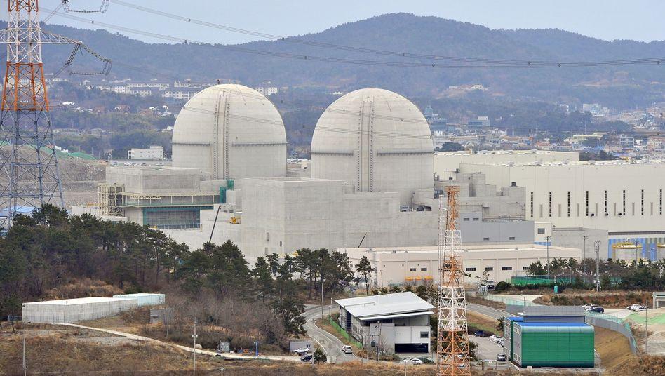 Übungen zur Cyberabwehr: Reaktoren Shin-Kori 3 und 4 in Südkorea