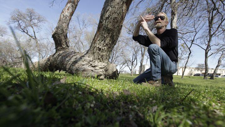 Indianische Markierungs-Bäume: Lebende Wegweiser