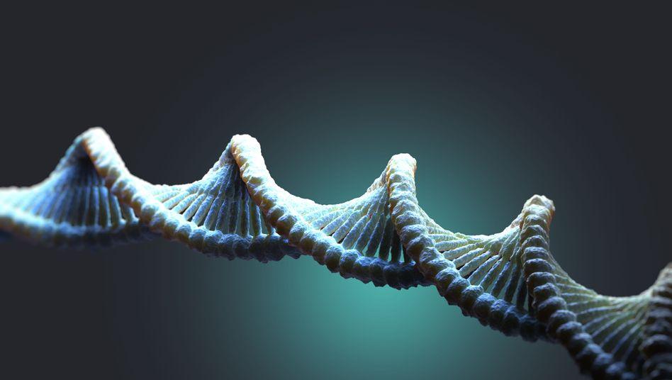 Illustration einer DNA-Doppelhelix: Genomsequenzierung kann eine Familie zerschlagen