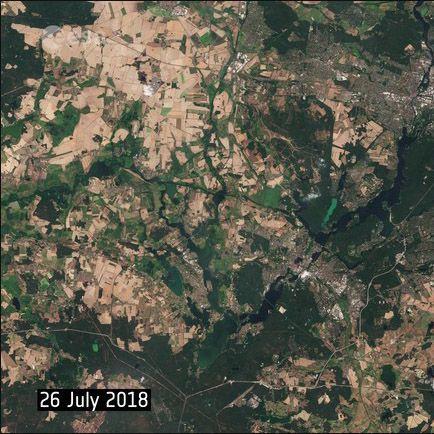 Hitze in Berlin: Satellitenbild zeigt Auswirkungen der Rekord-Dürre