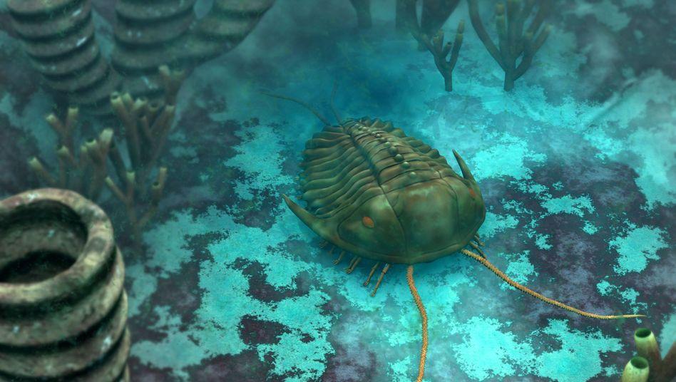 """Trilobit am Ozeanboden (künstlerische Darstellung): """"Moderat zunehmende Evolutionsrate"""""""