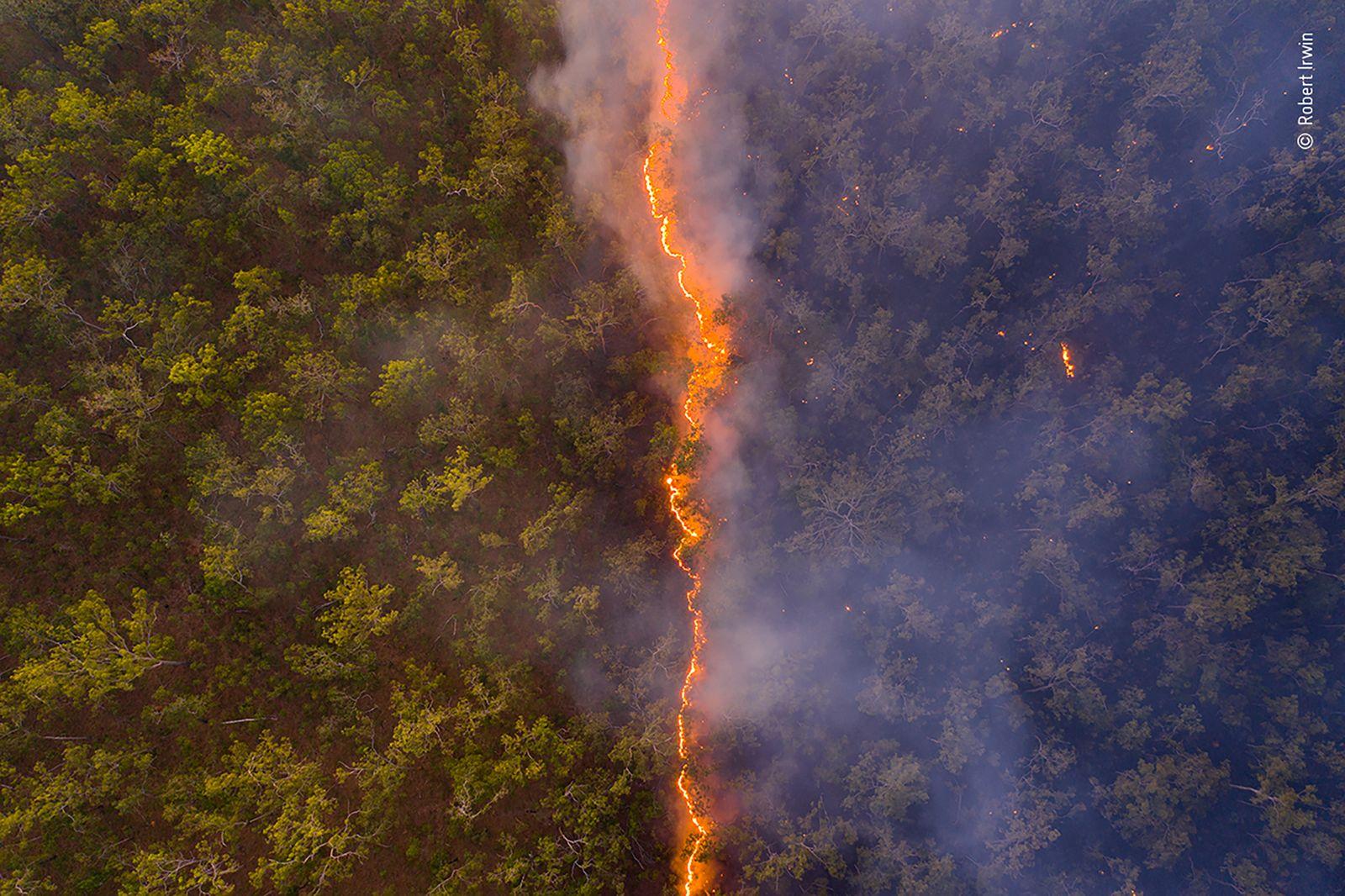 Bushfire by Robert Irwin, Australia