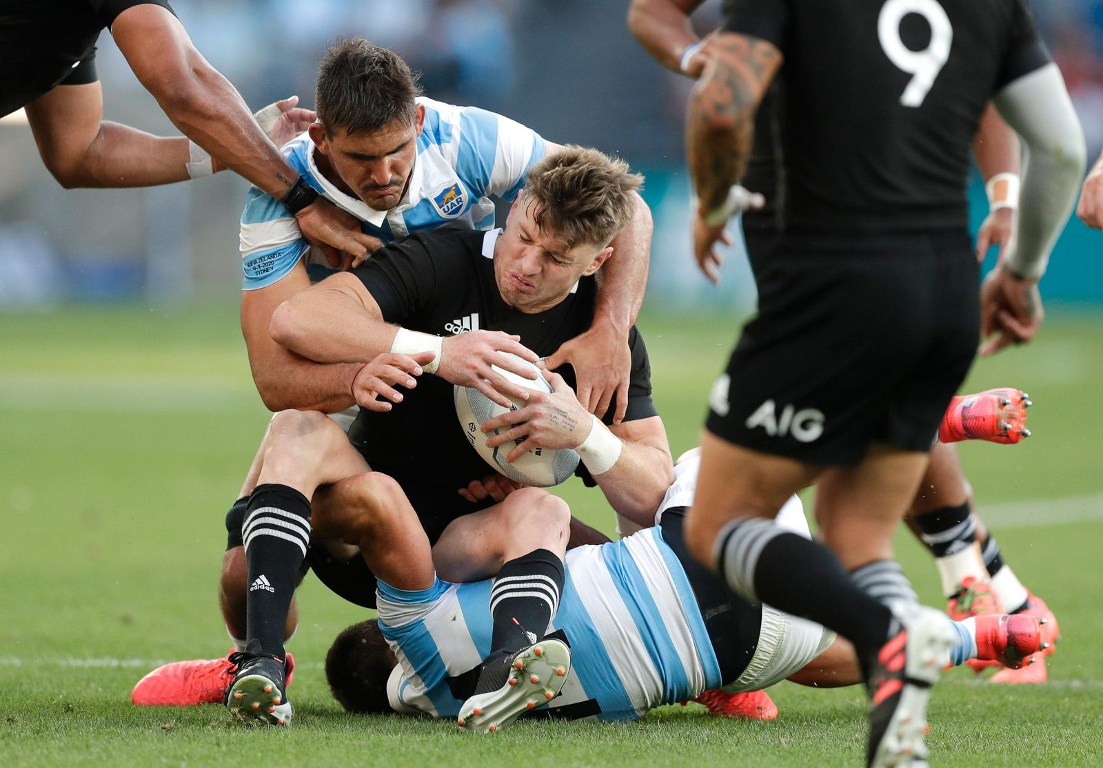 New Zealand Argentina Rugby Tri Nations
