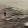 Ein Mensch und drei Delphine teilen sich eine Welle