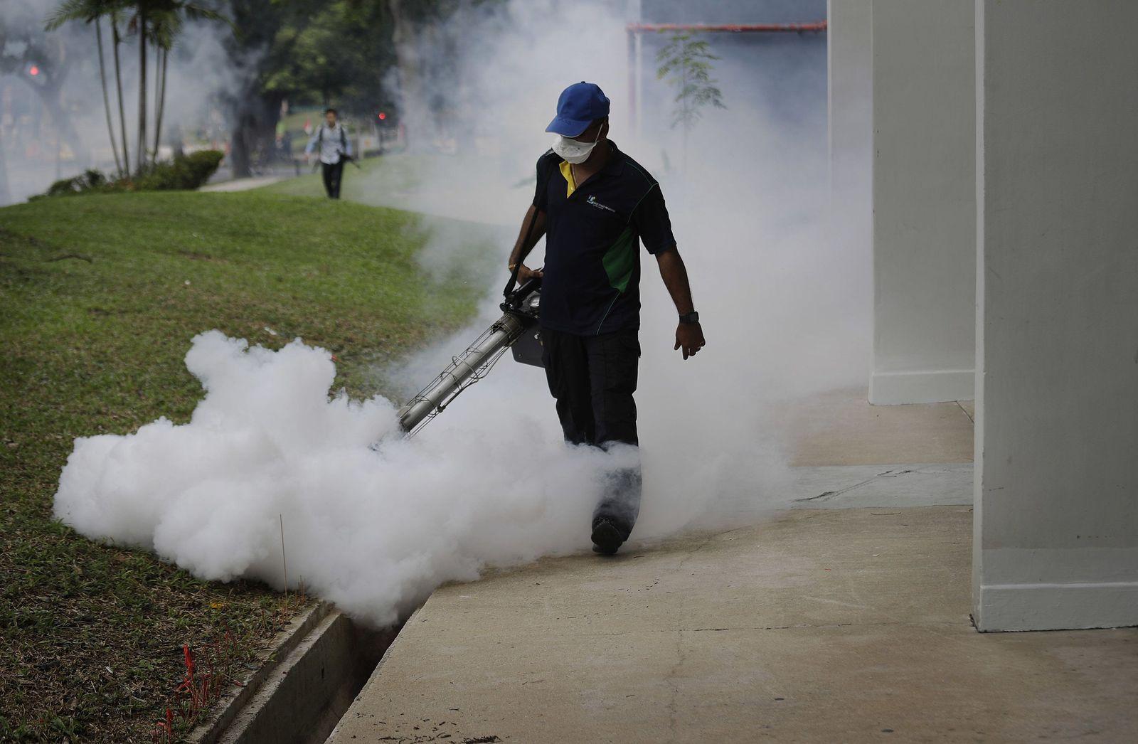 Singapur Zika