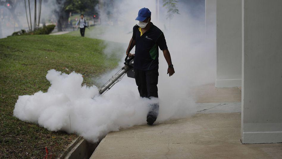Mückenbekämpfung mit Insektiziden (Singapur)