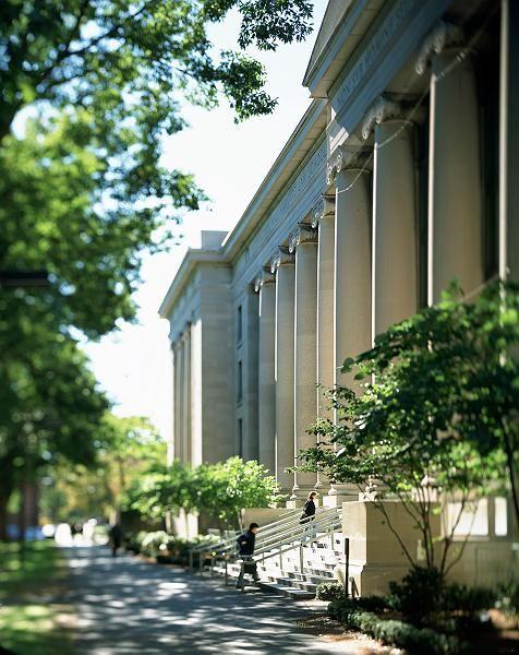 Elite-Uni Harvard: Gigantische Finanzprobleme