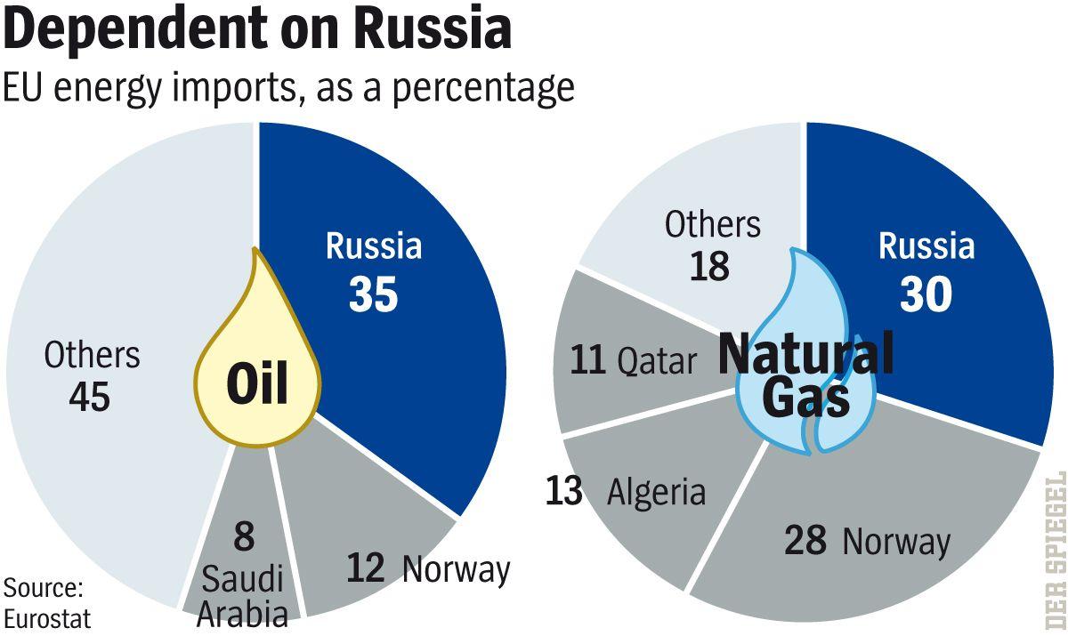 DER SPIEGEL 36-2014 Seite 63 - Dependent on Russia