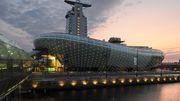 Waran reißt aus – Klimahaus Bremerhaven vorerst geschlossen