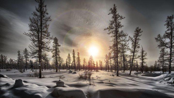 Michael von Hassel in Sibirien: Weite und Wälder